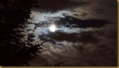 Full moom behind clouds by Richard Edwards
